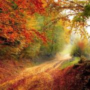 Szeptemberi színek