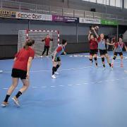 Újra edzésben  Fotó: DVSC Kézilabda