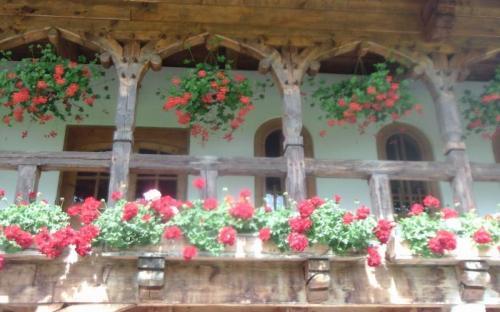 Virágokkal még szebb